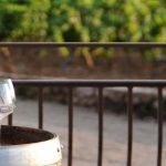 Château de l'Escarelle : des vins blancs singuliers