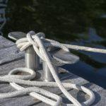 Pêche au Gros : des professionnels passionnés en Méditerranée